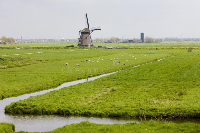 windmolen dichtbij Steefkerk, Nederland royalty-vrije stock fotografie