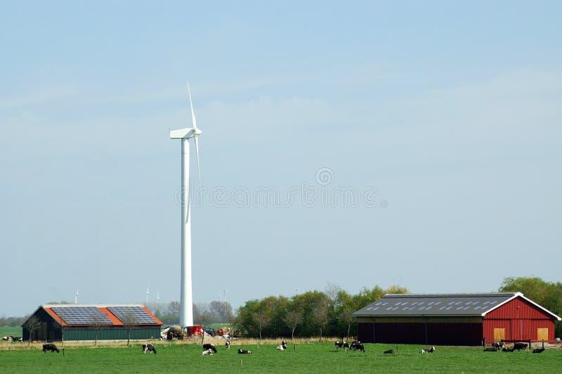 Windmolen en zonnepanelen stock afbeelding