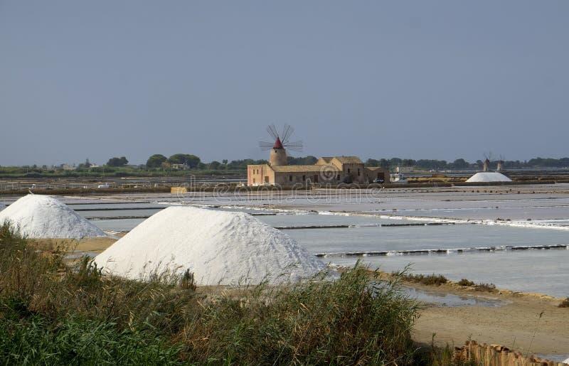 Windmolen en zoute vlakten royalty-vrije stock afbeelding