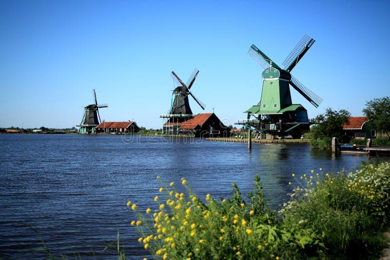 Windmolen in Holland royalty-vrije stock foto's