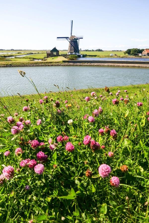 Windmolen in Holland stock fotografie