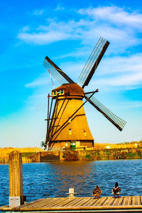 Windmolen in Kinderdijk - mooie zonnige dag royalty-vrije stock foto