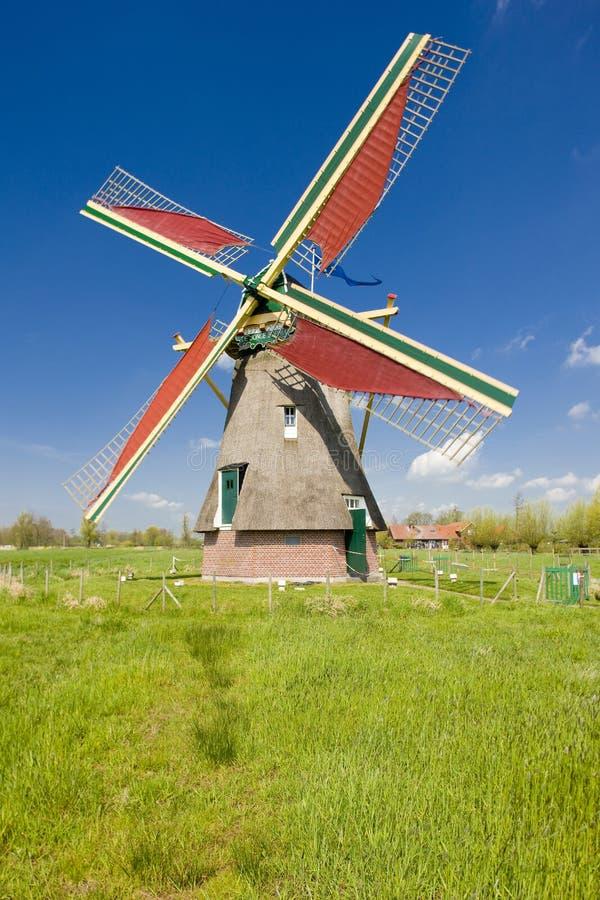 windmolen, Ooievaarsdorp, Nederland stock afbeelding