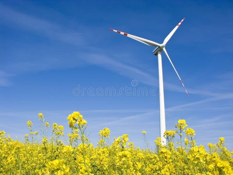 Windmolen op geel gebied royalty-vrije stock afbeelding