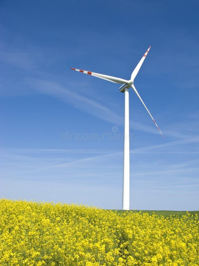 Windmolen op geel gebied royalty-vrije stock afbeeldingen