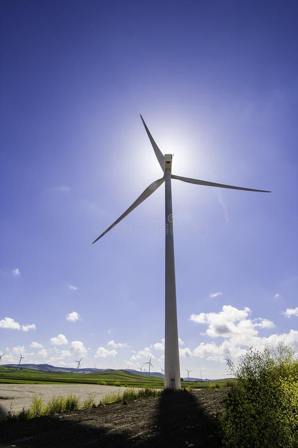 Windmolen op weide stock foto's