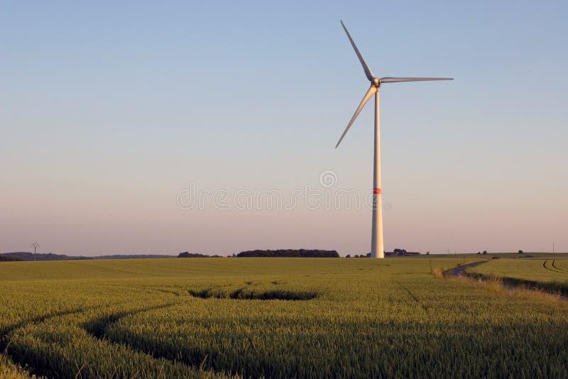 Windmolen op zonsondergang stock fotografie