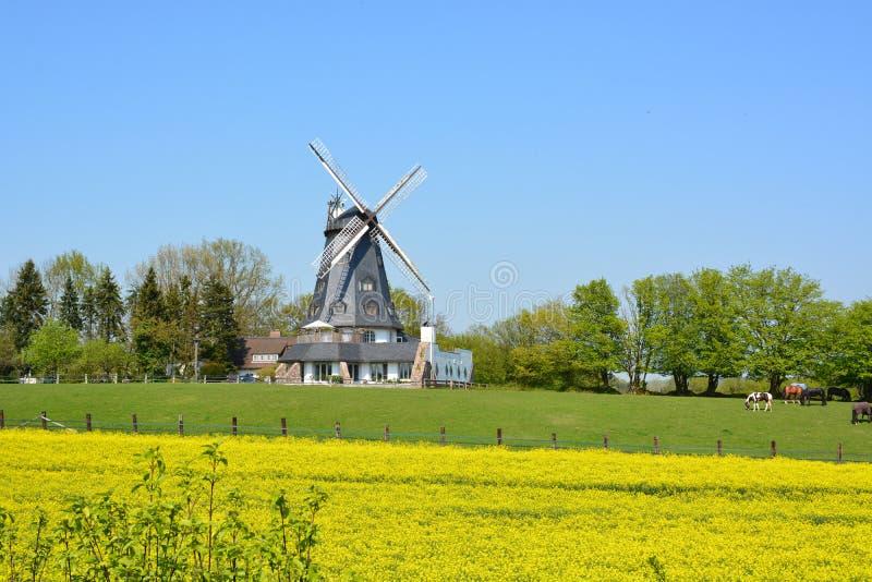 Windmolen van Mölln, Duitsland stock foto