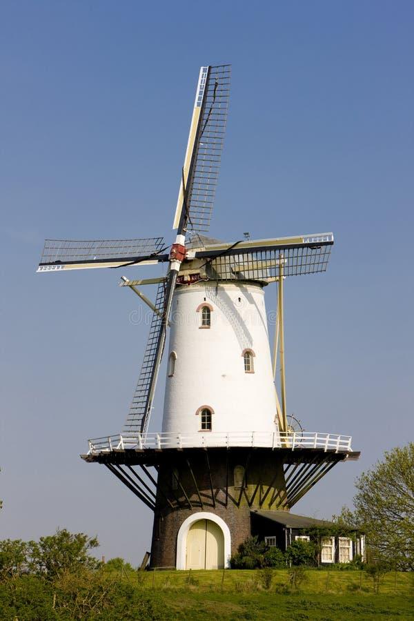 windmolen, Veere, Zeeland, Nederland stock afbeeldingen