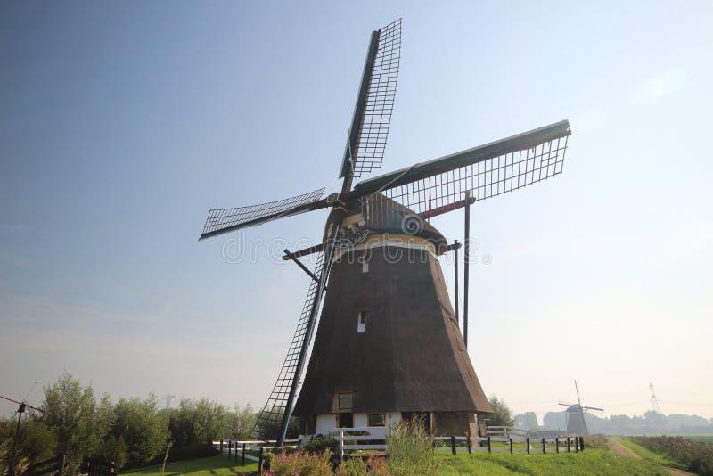 Windmolen in Zevenhuizen, molen nr 2 van Molenviergang Zevenhuizen royalty-vrije stock foto