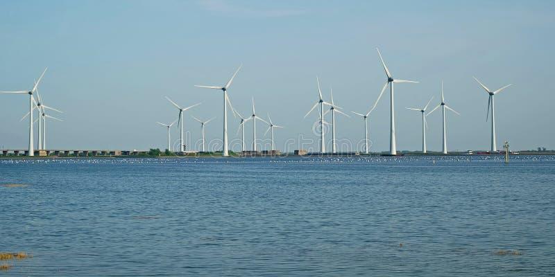 Windmolenpark bij de kust van Oosterschelde in Zeeland royalty-vrije stock foto