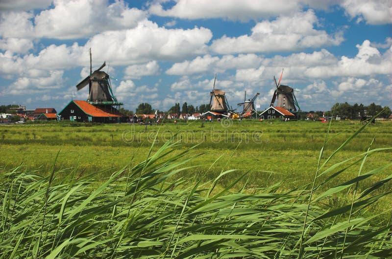 Windmolens stock fotografie