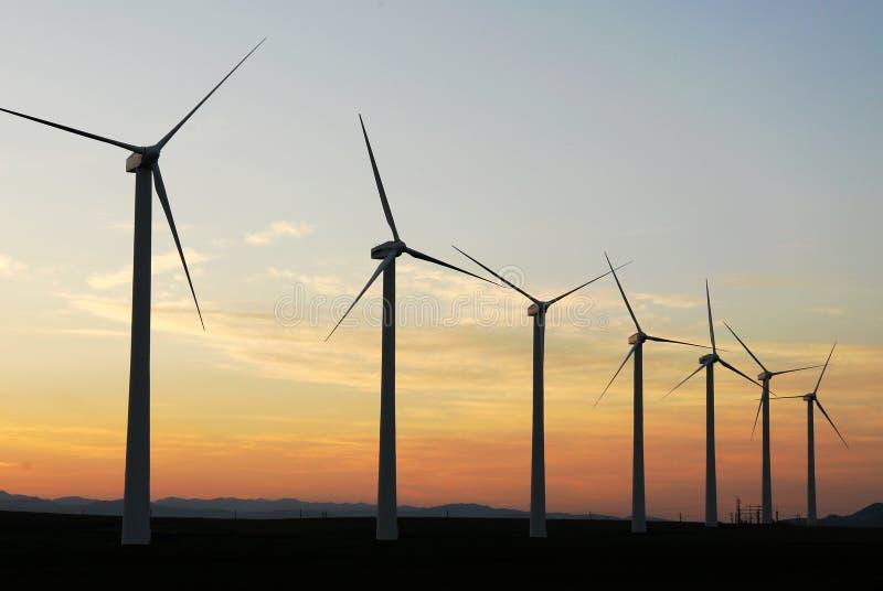 Windmolens bij schemer stock foto's