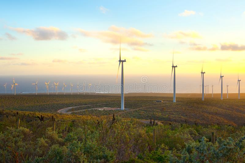 Windmolens bij windlandbouwbedrijf in Chili royalty-vrije stock afbeeldingen