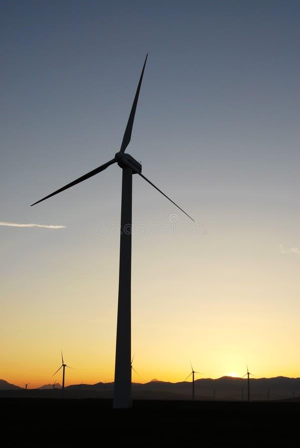 Windmolens bij zonsondergang stock afbeeldingen
