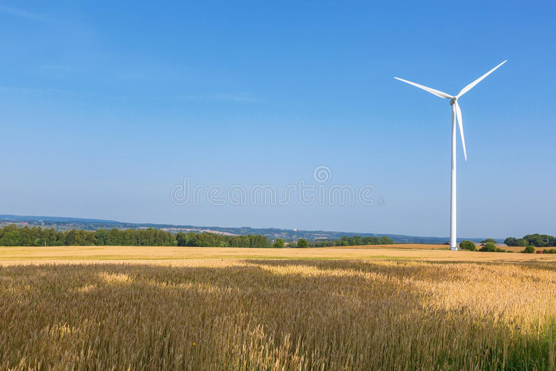 Windmolens in cornfield royalty-vrije stock afbeelding