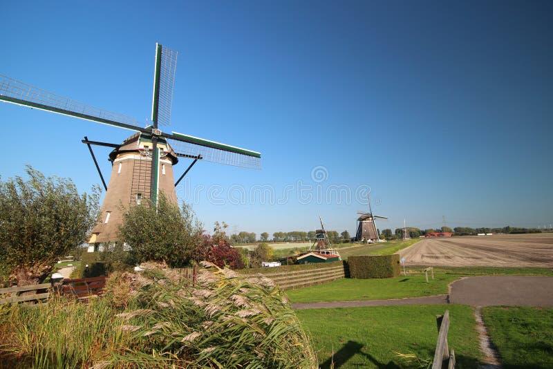 Windmolens die nog Tweemanspolder in Zevenhuizen werken te houden droog in Nederland royalty-vrije stock foto