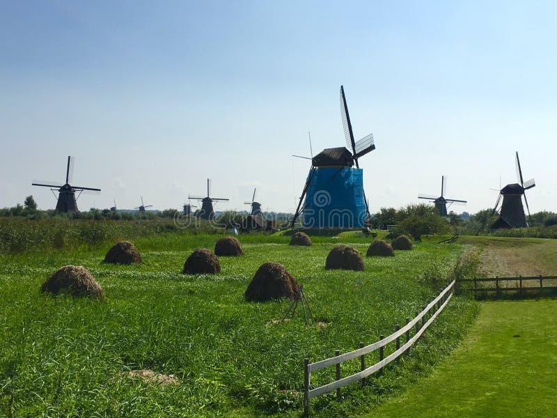 Windmolens; Kinderdijk, Holland stock afbeeldingen