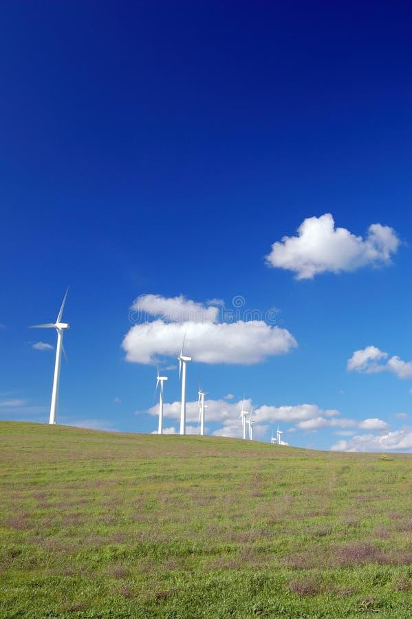 Windmolens op gebied royalty-vrije stock fotografie
