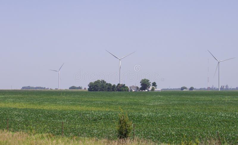 Windmolenselektrische centrale in landelijk landschap Het landbouwbedrijf van de windturbine voor stroomproductie Windmolens voor stock fotografie