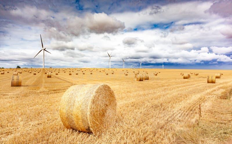 Windmolenturbines in een landbouwlandschap met velden en grasland stock foto's