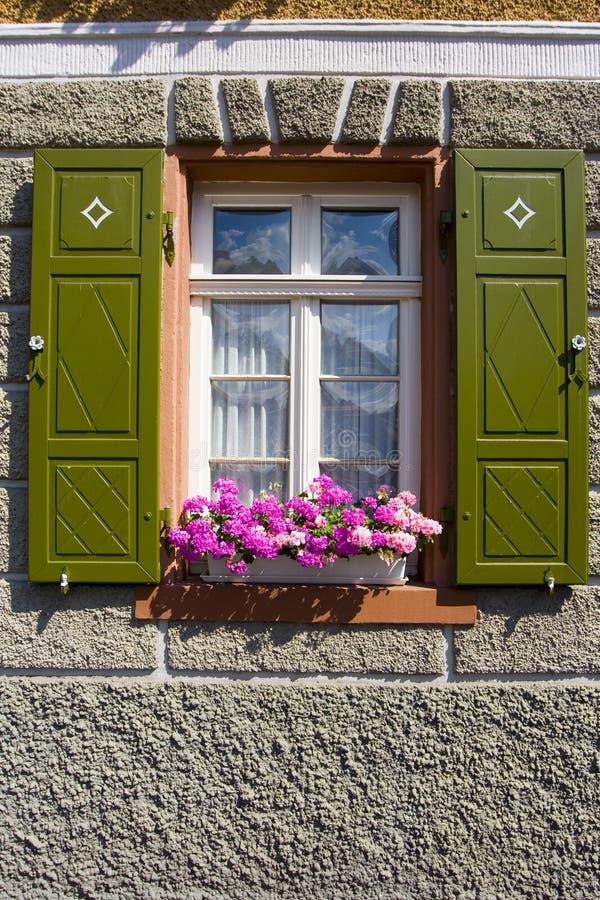 Window stock images