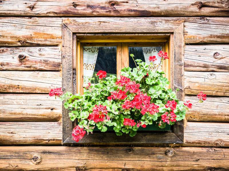 Download Window stock image. Image of building, exterior, cabin - 29012657