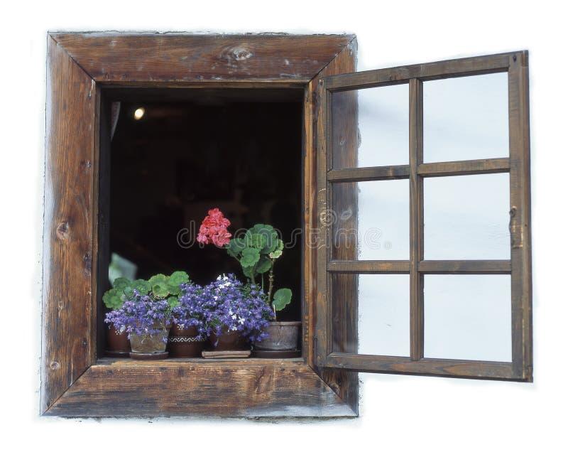Download Window stock photo. Image of close, plants, concepts, colour - 3267014