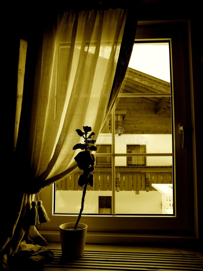 Download The window stock photo. Image of glass, monochrome, romantic - 6453216