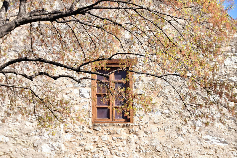 Download Window In The Alamo Stock Photo - Image: 23407830