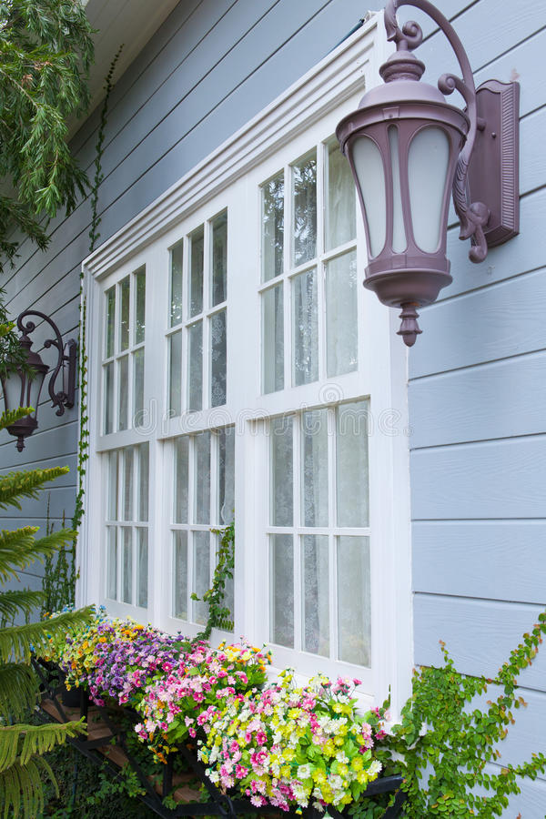 Free Window And Flower Royalty Free Stock Photography - 26843297