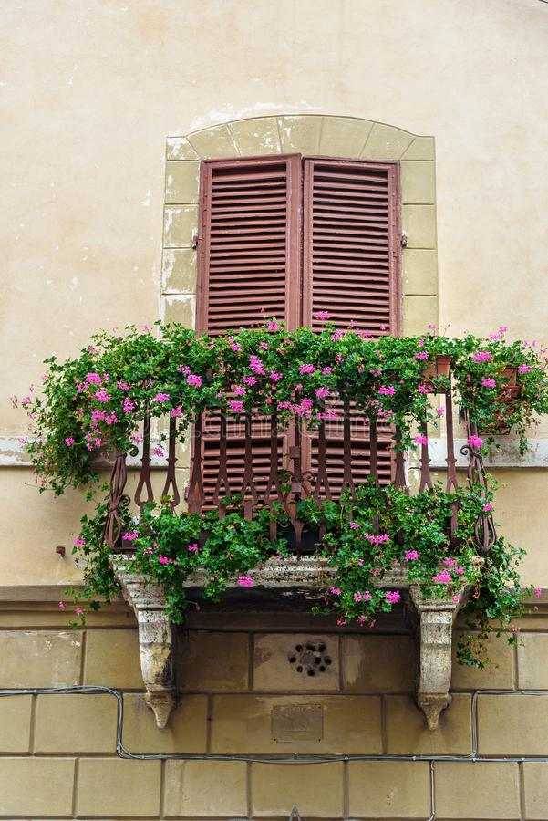 Window and balcony with wooden shutters of old house in Siena. Italy. Traditional window and balcony with wooden shutters of old house in Siena. Italy royalty free stock photo