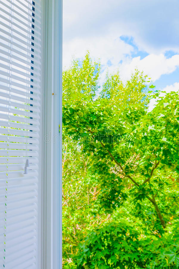 Window blinds. Closed plastic blinds on the window with the reflection in the glass royalty free stock image