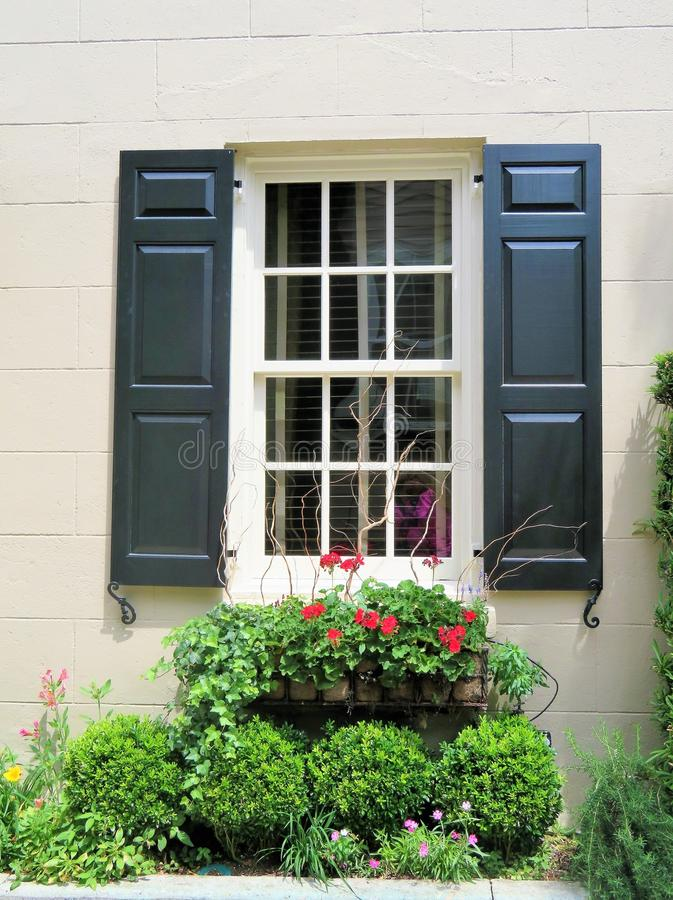 Window with blue shutters and a window box filled with blooming flowers. And plants stock images