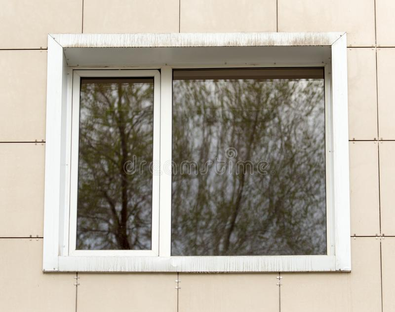 A window in the building as the background.  stock images