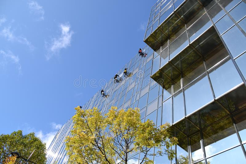 Teamwork - window cleaners at work royalty free stock photography