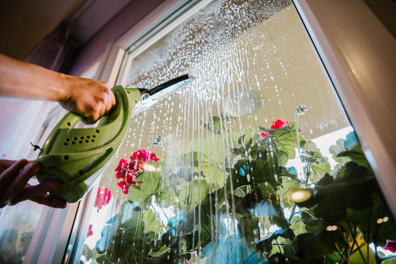Window cleaning at home stock images