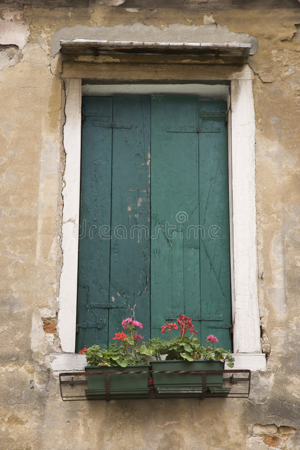 Window with closed shutters and flowers. royalty free stock images