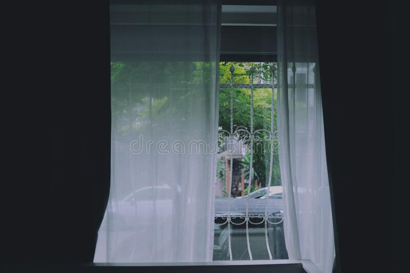 Window Curtains in Fenced In Window stock photo