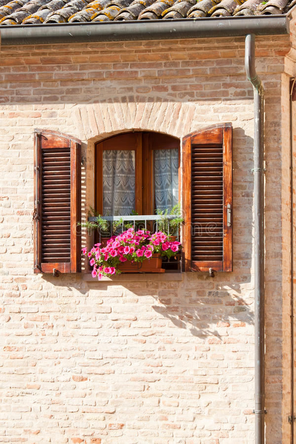 Window With Flower Stock Photography