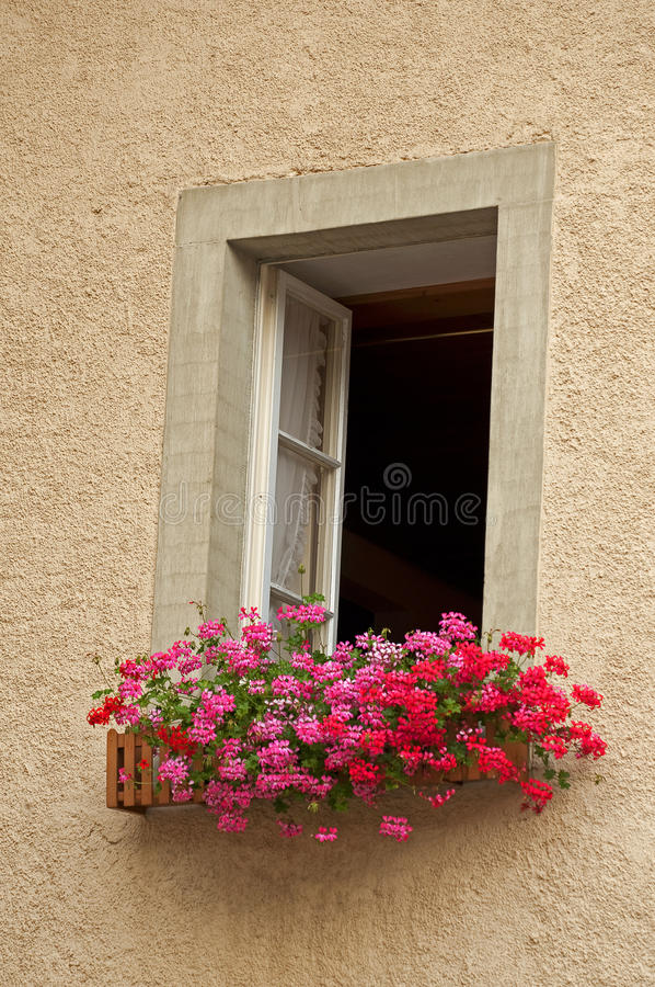 Window and flowers. An open window with flowers stock image