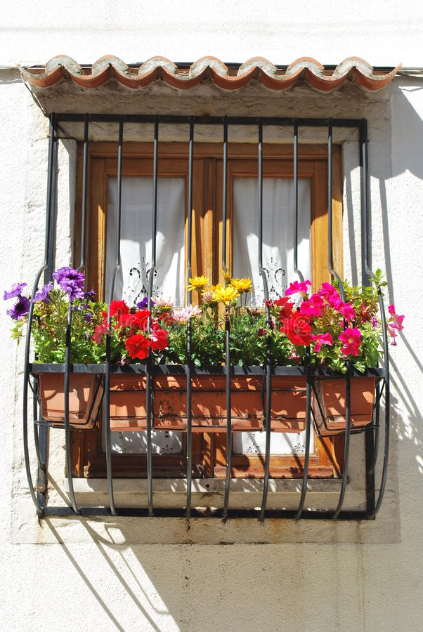 Download Window with flowers stock photo. Image of decor, flower - 9681932
