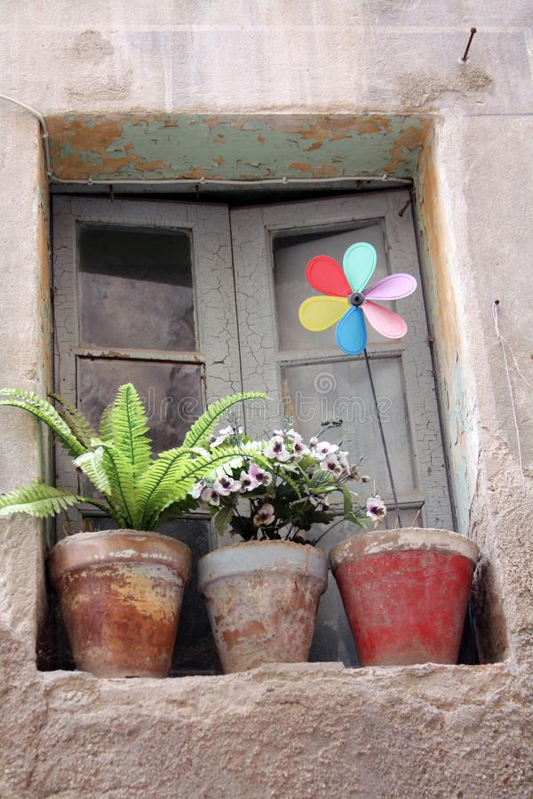 An old window with flowers on the cornice stock image