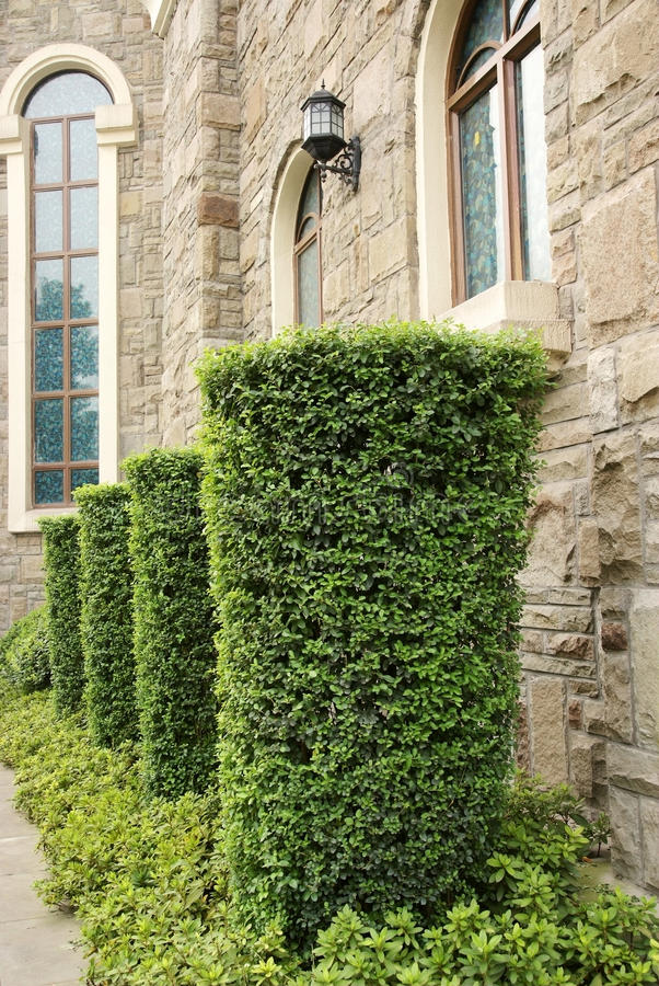 Window with gardens stock images
