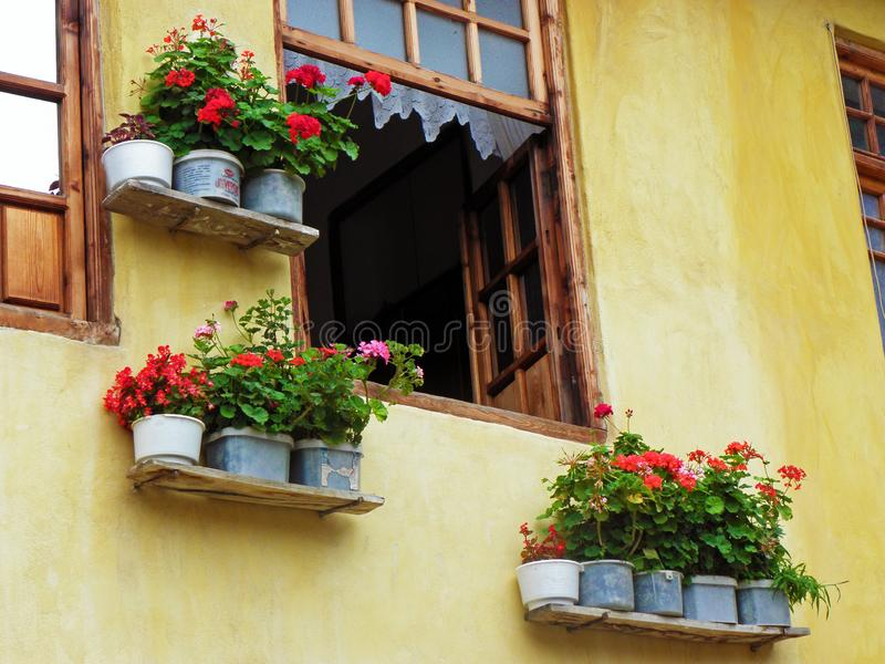 Wooden window and Geranium flowers in Masouleh stock images
