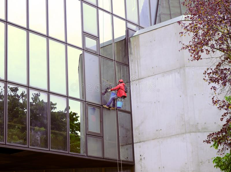 Window glass cleaning in a modern office building royalty free stock image