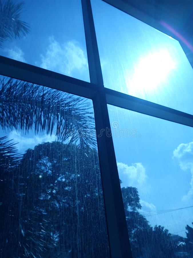 Window glass with tree and sun view outside. Window glass view tree sun outside stock image