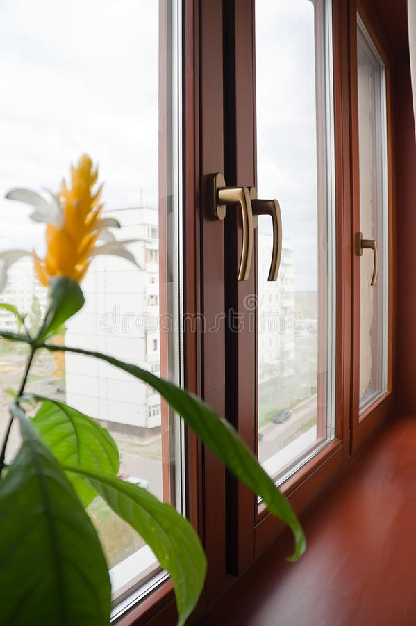 Window. Glazed windows. Wooden box with glass, view from inside the house stock photo