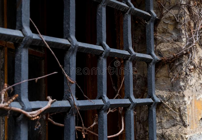 Window old grate dungeon dark failure entwined by wild grapes part of old wall royalty free stock photo
