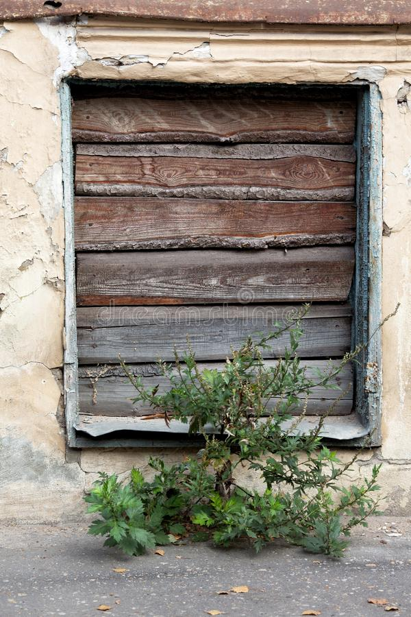 Old brick wall and windows. With wooden shutters royalty free stock photos
